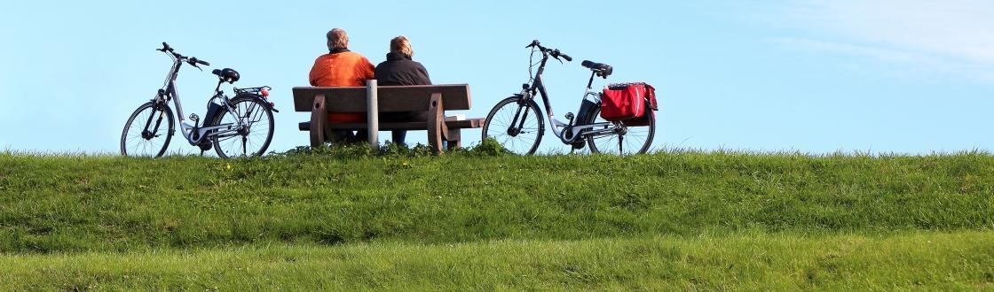 elektrische fiets kopen tips voor de beste e bike. Black Bedroom Furniture Sets. Home Design Ideas