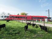 zelfrijdende trein ProRail