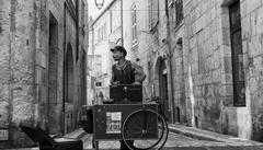 Beste zwart-witfoto's - Le musicien