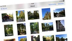 Blijf compatibel fotograferen in iOS zonder HEIC