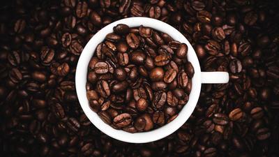 Test: Koffiezetters die je bakkie troost goed warm houden