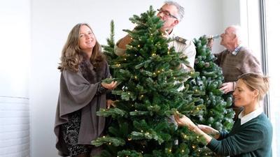 De zeven mooiste kunst-kerstbomen uit onze test