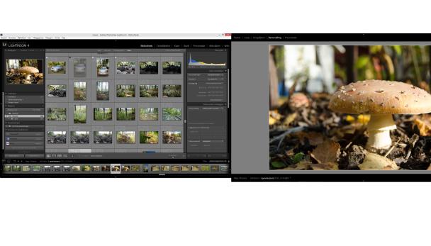 Afbeelding van editen met twee beeldschermen