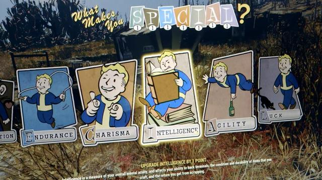 Special systeem fallout 76