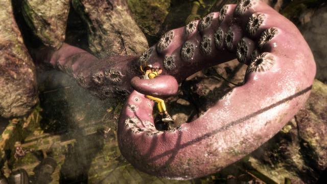 DOA 6 Octopus