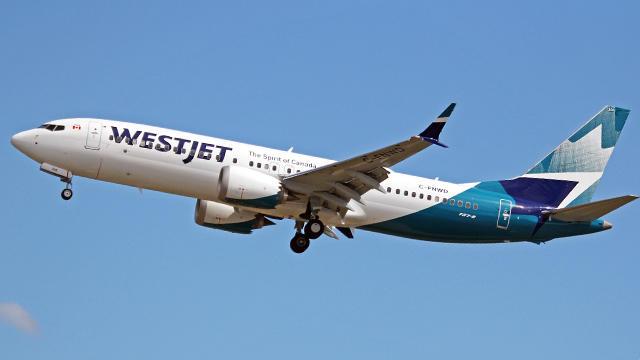 Boeing 737 Max veilig