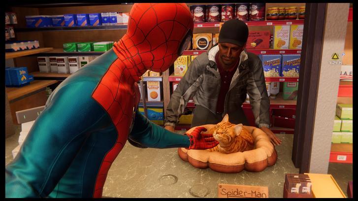 Spider-Man: Miles Morales cat