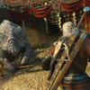 The Witcher 3, Screenshots