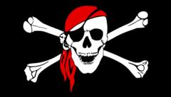 Blokkade The Pirate Bay
