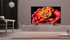 Sony KD-65XG9505 tv