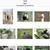 Zoek naar foto's middels een trefwoord in macOS en iOS Foto's