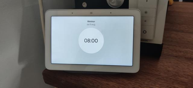 Wekkers Google Home